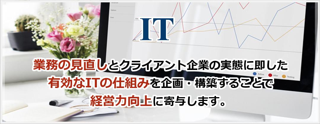IOT:~業務の見直しとクライアント企業の実態に即した有効なITの仕組みを企画・構築することで経営力向上に寄与します。~
